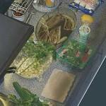 von Kochen bei Albrecht im Januar bei Alleine Kochen ist doof - gemeinsam macht´s mehr Spaß!